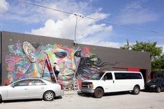 在Wynwood的艺术壁画 图库摄影