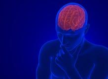 在X-射线的人脑 包含裁减路线 向量例证