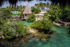 在Xcaret墨西哥的绿色池 库存照片