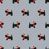 在xmas帽子无缝的样式的苏格兰狗 皇族释放例证