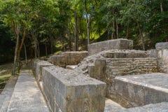 在Xunantunich的抽象古老玛雅废墟在圣伊格纳西奥,伯利兹向夫人扔石头 库存照片
