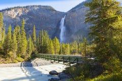 在yoho河的桥梁, takakkaw落, yoho国家公园不列颠哥伦比亚省,加拿大 免版税图库摄影