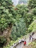 在Yuanjiajie风景区,武陵源,张家界,湖南,中国,亚洲的第一座自然桥梁 图库摄影