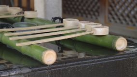 在Yushima寺庙的洗净低谷在东京 股票录像