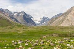 在Zanskar谷的呈绿色季节,查谟克什米尔,印度 免版税库存图片