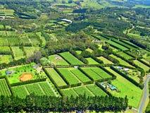 在zealan新的paihia的视图附近的空中农业 免版税库存图片