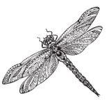 在zentangle样式的手拉的蜻蜓 图库摄影