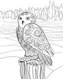 在zentangle样式的斯诺伊猫头鹰 免版税库存图片