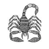 在zentangle样式的蝎子在白色背景 库存照片