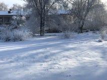在ZP的不可思议的冬天 库存照片