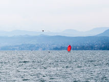 在Zurich湖的红色风帆 库存照片
