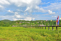 在Zutongpae桥梁的米领域 库存照片