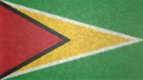 圭亚那的旗子的原始的3D图象 库存例证