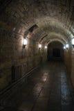 地下室Gatchina宫殿 库存图片