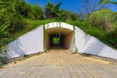 地下步行隧道通过天花板天花板曲拱 免版税库存图片