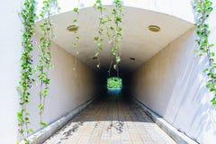 地下步行隧道通过天花板天花板曲拱 库存图片