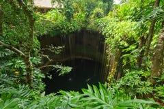 地下池在Chichen Itza附近的Ik-Kil Cenote 免版税库存图片