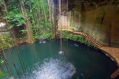 地下池Ik-Kil Cenote在墨西哥 库存图片