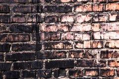 织地不很细砖墙 库存照片