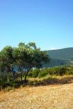 地中海夏天风景 免版税库存图片