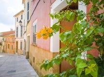 地中海样式房子在老镇 免版税库存照片