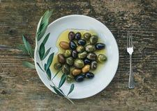 地中海橄榄板材在橄榄油的与ol分支  图库摄影