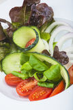 地中海沙拉在餐馆 免版税图库摄影