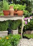 地中海的庭院 库存照片