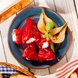 地中海红辣椒和葱开胃小菜 库存照片