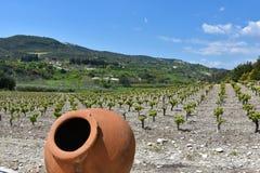 地中海amphorae 免版税图库摄影