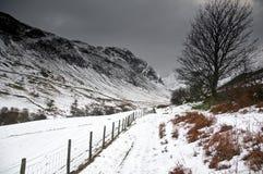 地区湖冬天 免版税图库摄影