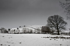 地区湖冬天 库存图片