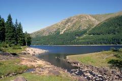 地区湖风景 库存照片