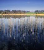 地区湖 库存图片