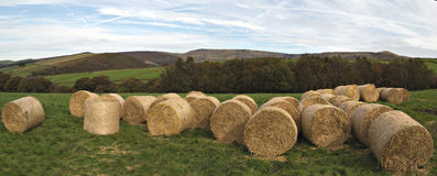 地区英国农厂峰顶 图库摄影