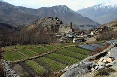 地区jhong muktinath尼泊尔村庄 免版税库存照片