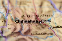 地图的奇瓦瓦狗城市 库存照片