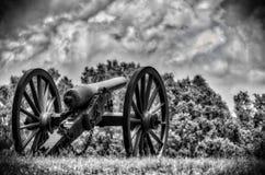 默默地坐孤立的大炮 免版税库存图片