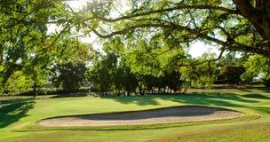地堡高尔夫球绿色 免版税库存照片