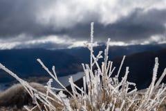 地峡峰顶, Wanaka 免版税图库摄影
