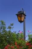 地平线灯笼在庭院里 库存图片