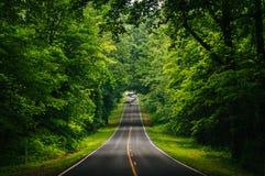 地平线驱动,在Shenandoah全国P一个密集的树木丛生的区域  免版税库存图片