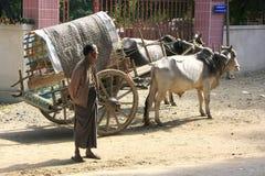 地方人站立在街道的, Mingun,缅甸 免版税库存照片