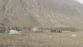 地方农夫在尼泊尔运载在头的重的柳条筐 马纳斯卢峰地区 股票录像