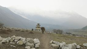 地方农夫在尼泊尔运载头的重的干草堆 马纳斯卢峰地区 影视素材
