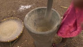 地方剥壳在灰浆,科纳克里的米五谷 股票视频