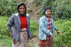 地方妇女在钦邦,缅甸 库存图片