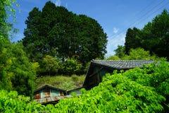 地方村庄看法在阳光天, Yufuin安置在绿色植物和山中的屋顶沿风景路线 库存照片