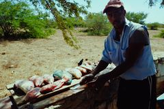 地方渔夫在树荫下的清洗抓住得到远离热带热 免版税图库摄影