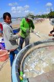 地方渔夫从他们的在Lagi海滩的捕鱼网去除鱼 免版税库存图片